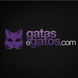 Gatas e Gatos